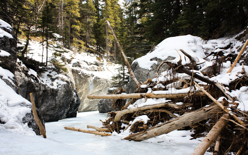 Flood debris near the entrance to the Grotto Canyon Ice Walk
