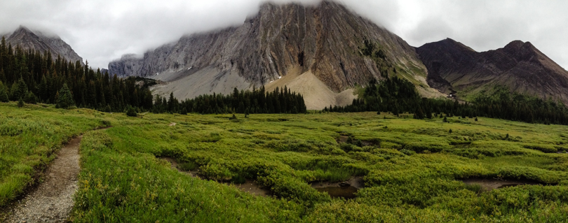 Looking back in the direction of Chester Lake from the meadow. Now onward back to the parking lot!