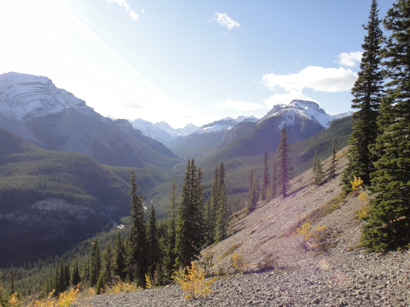 Another view of the Elbow Valley