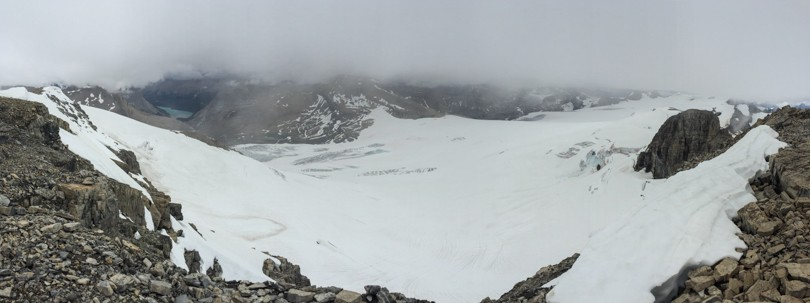 View of the Wapta Icefield from the summit