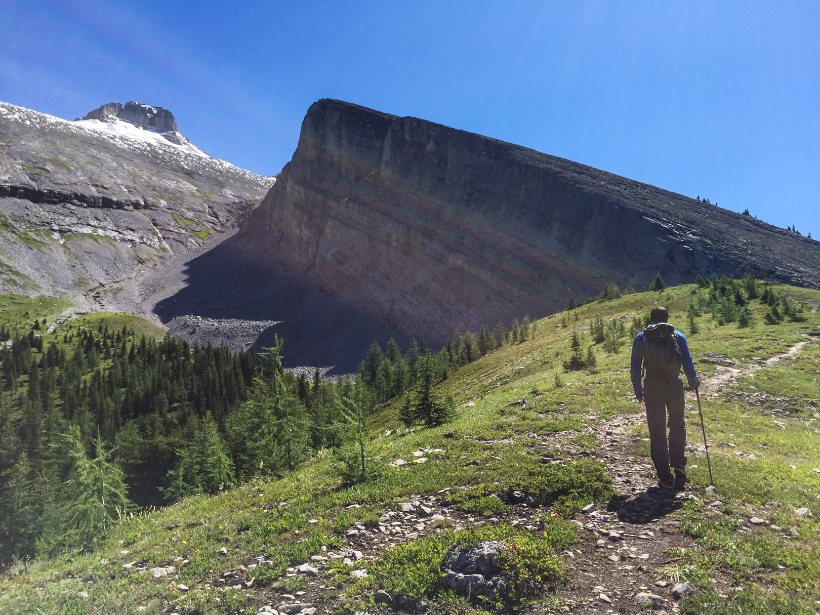 1) Hike through the forest to the meadow. 2) Hike up the gully to the left of Read's Tower. 3) Lots of rock. 4) Scree scramble to the top.