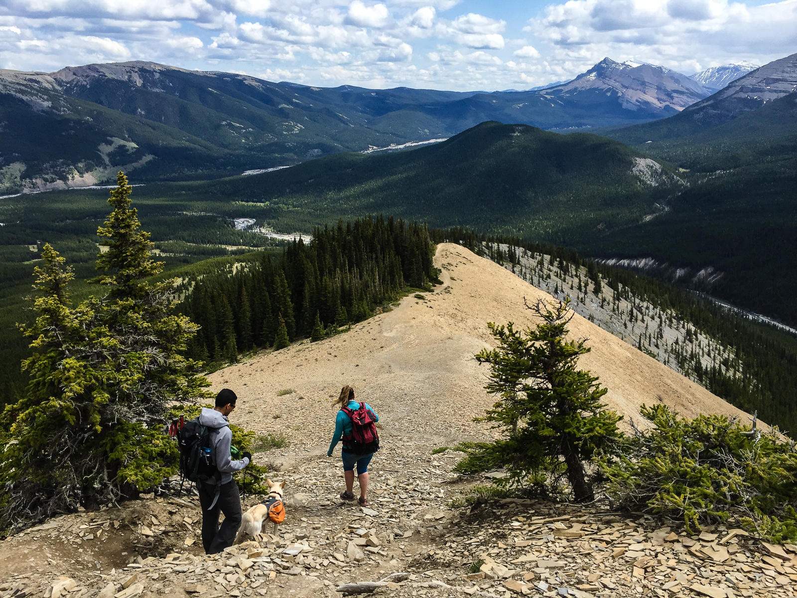 Descending on Nihahi Ridge Trail