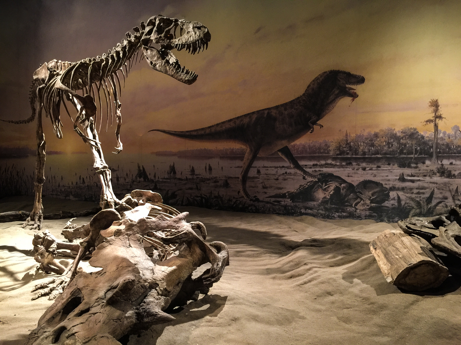 One of the exhibits in the Royal Tyrrell Museum