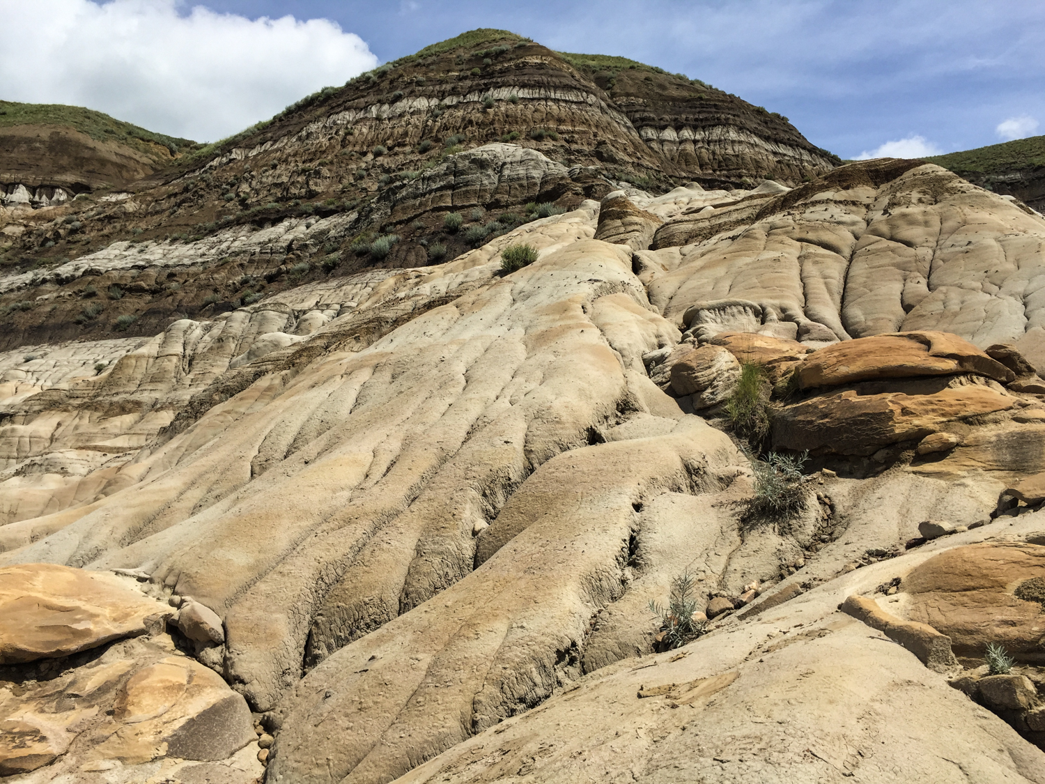 There's a lot of this kind of geological formation in the Red Deer River Valley in the east-central Alberta badlands